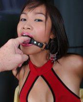Thai Blowjob Girls